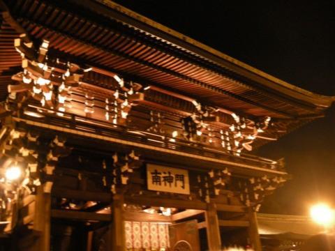 hatsumode tokyo nubia tours