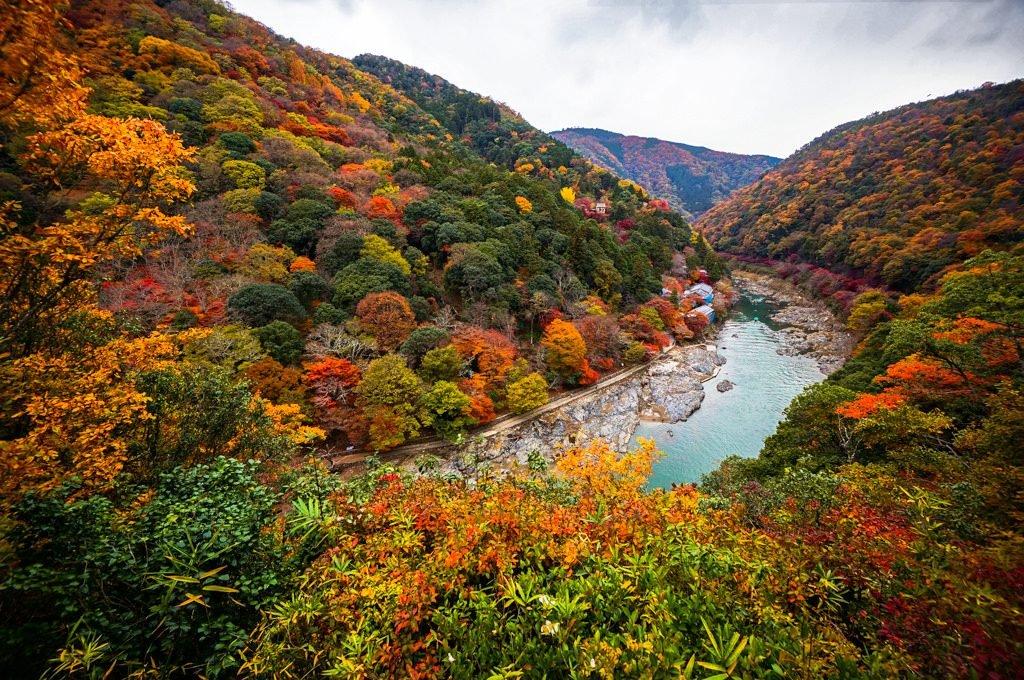 Arashiyama Momiji Matsuri4